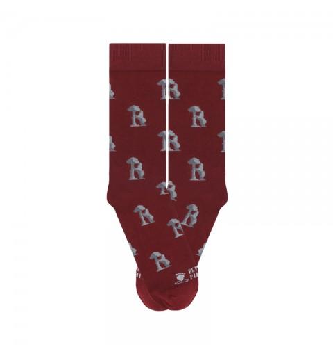 Calcetines del oso y el madroño